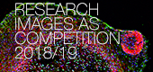 Research Images as Art / Art Images as Research Competition 2018/19